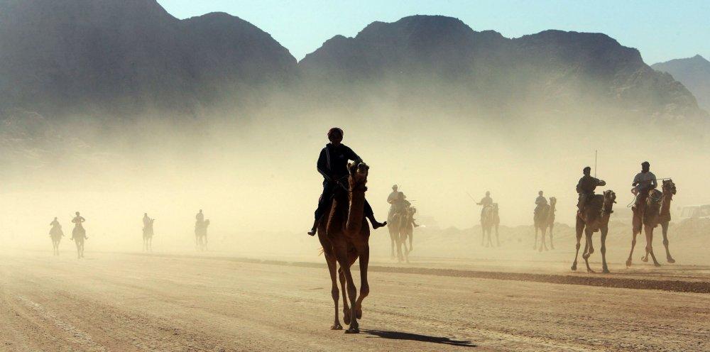 wadi10.jpg